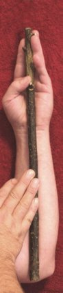 image of hands measuring a cubit against a forearm.